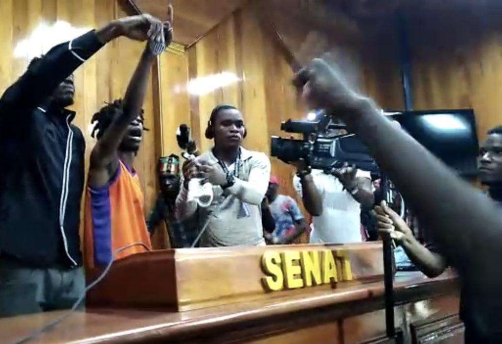 Des individus envahissent l'enceinte du parlement