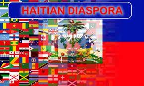Nouvelle Constitution, la diaspora embrasse le projet